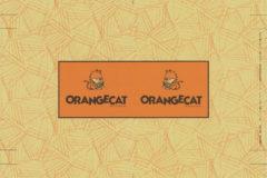 オレンジキャット